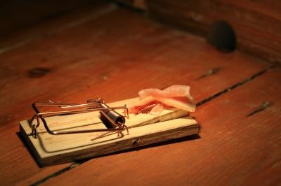 Mit Speck Fängt Man Mäuse Jokers Literatur Blog